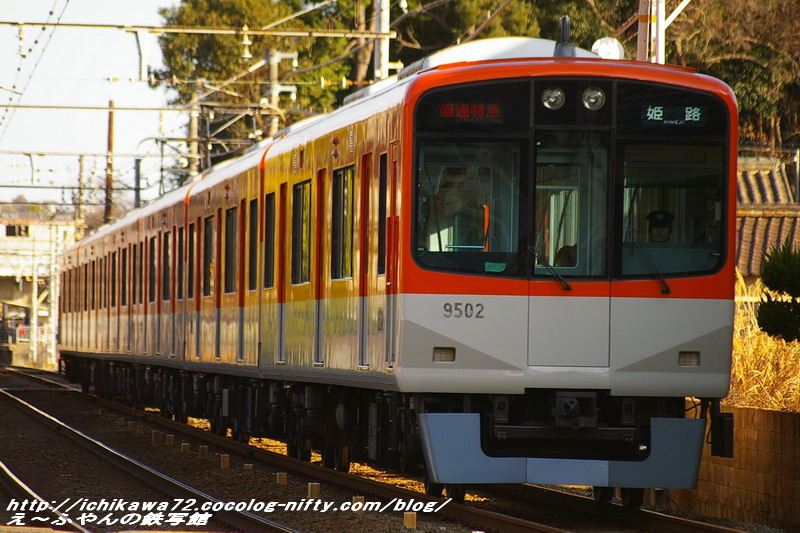 Imgp8357