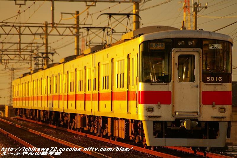 Imgp8502