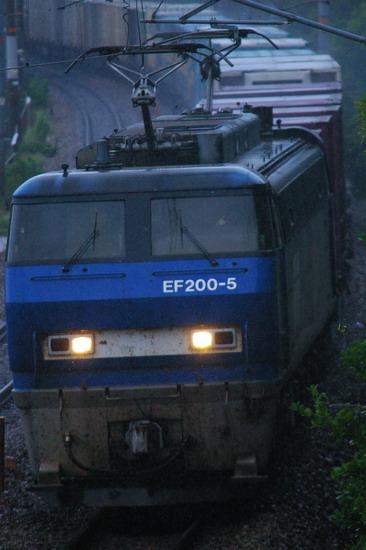 3050ef2005